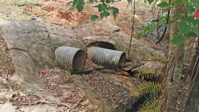 Photo of Aussie Trenchless leaves no project in the trenches